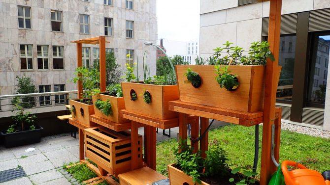 Die Biofarm für den Balkon
